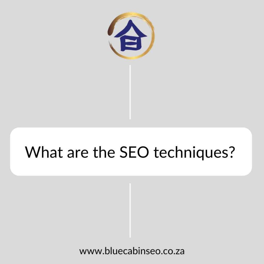 What are the SEO techniques?